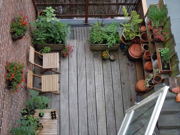 Planten Voor Balkon.De Beste Planten Voor Op Je Balkon Tuin En Balkon