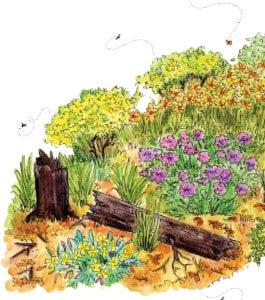 wilde planten in je tuin