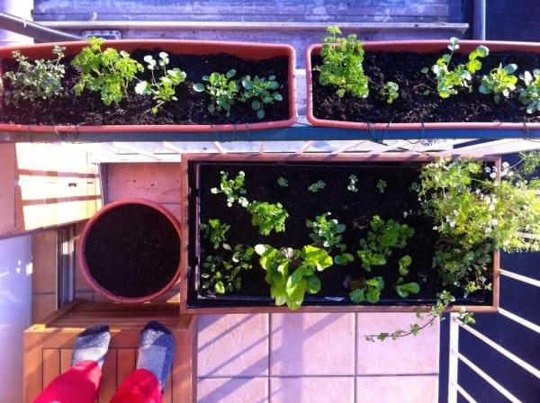 balkontuin-voor-kinderen