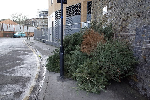 foto via: http://www.brixtonbuzz.com/2014/01/brixton-christmas-tree-graveyard-and-how-to-properly-dispose-of-your-own-tree/
