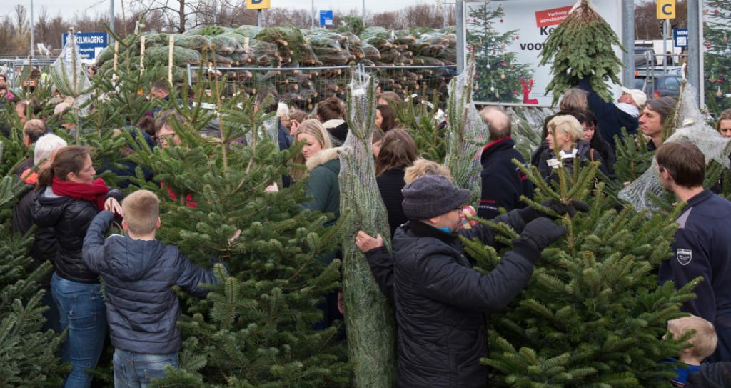 IKEA kerstboom actie 2018 - goedkoopste kerstboom 2018