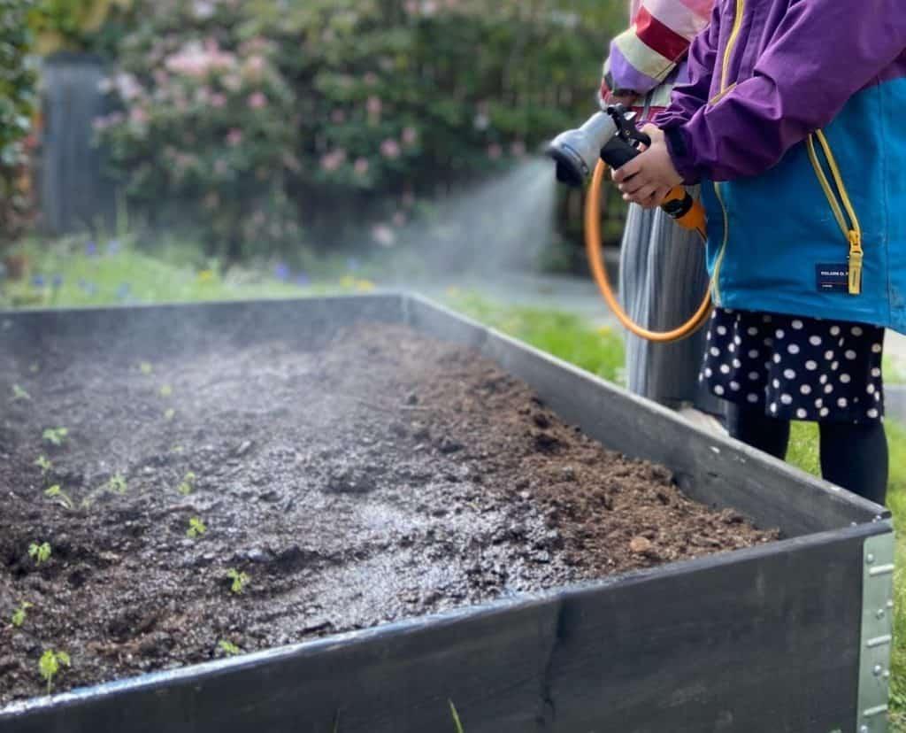 tips-tegen-droogte-in-de-tuin-minder-sproeien-slimmer-sproeien